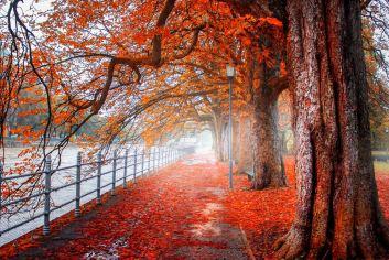 Múnich otoño